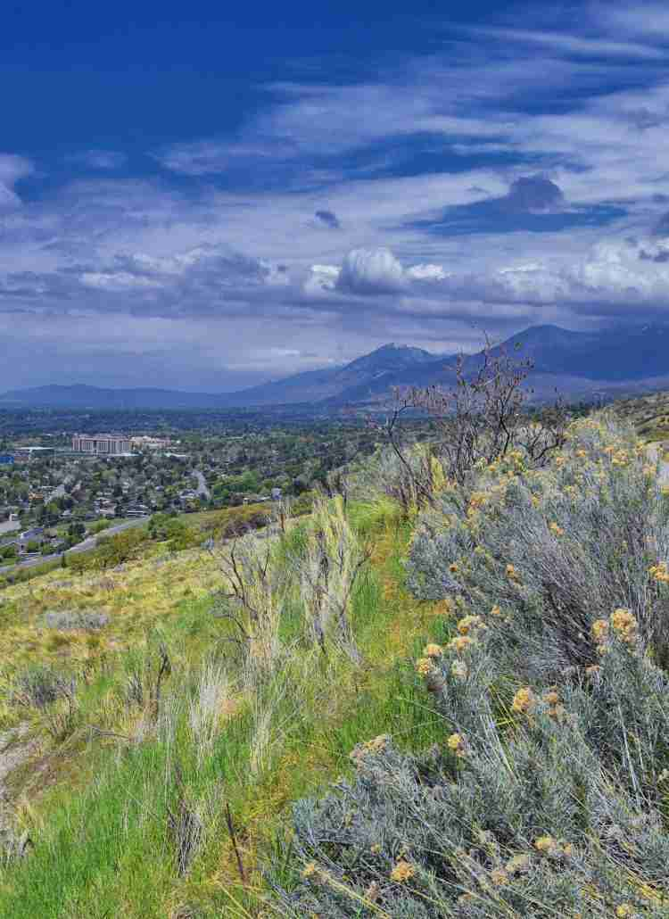 Discover the best Salt Lake City mountain bike trails with this guide written by a local shredder. Explore DH tracks, flow trails, and more.