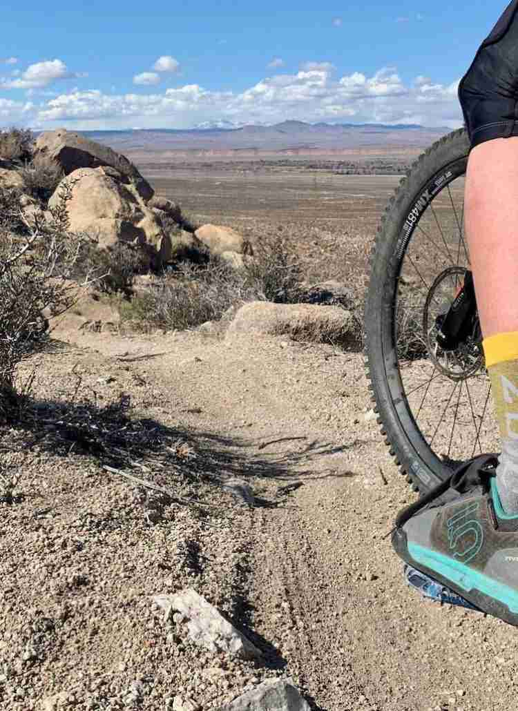 Discover the best women's mountain bike shoes for every type of rider including clipless cross-country shoes and flat pedal freeride options.